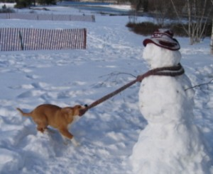 Quincy with Snowman